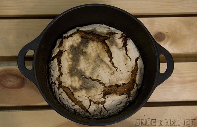 Chleb żytni na zakwasie ze słonecznikiem z garnka żeliwnego